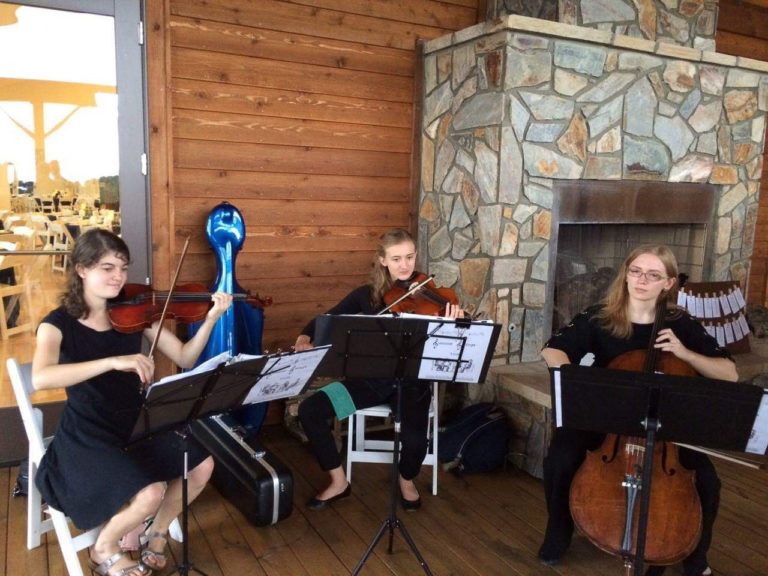 A string trio of violin, viola, and cello play at a wedding event.